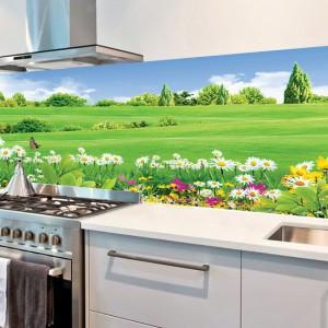TK3DS011: Tranh kính 3D ốp bếp cao cấp